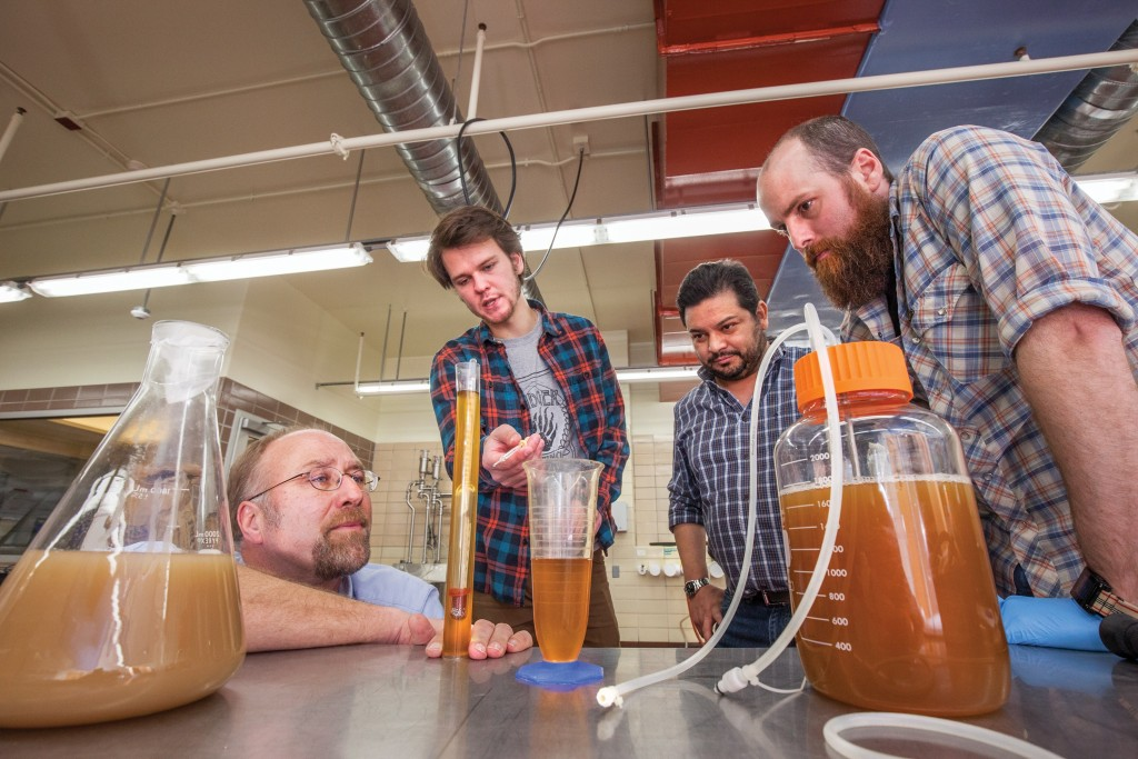 Students brewing beer