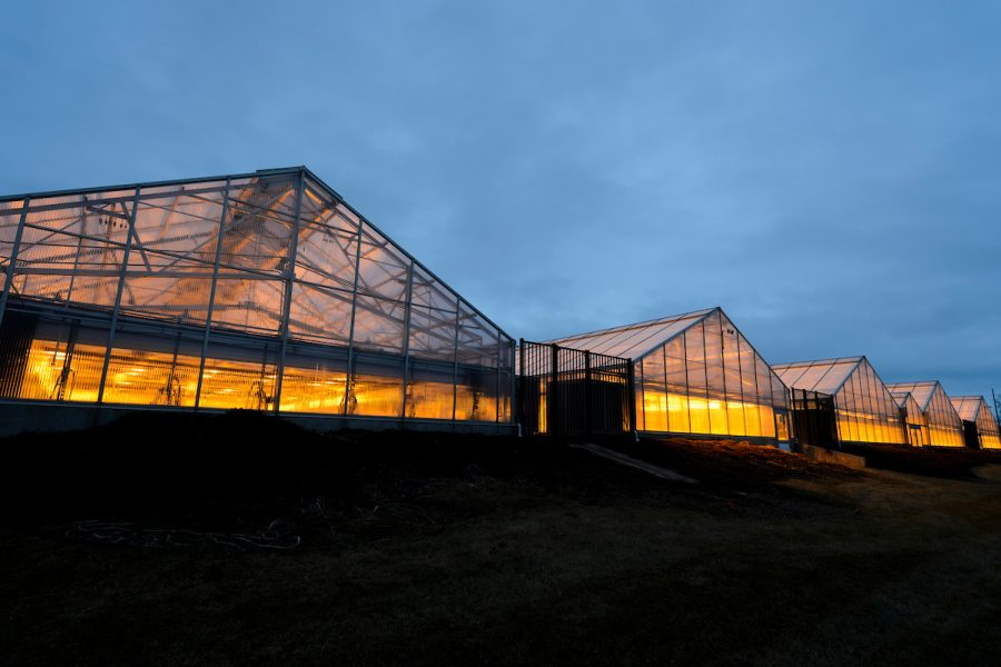 Greenhouse lights glow in the dusk sky at the Wisconsin Crop Innovation Center at the University of Wisconsin-Madison